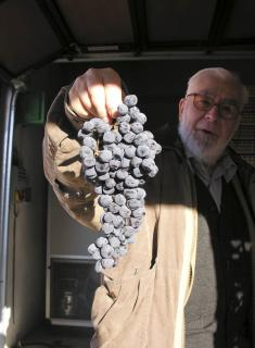 left hung out to dry: John Salvi MW models the latest in amarone wear