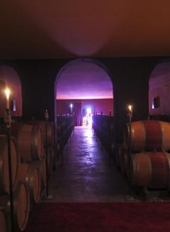In the cellar at Château Ducru Beaucaillou